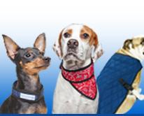 Aqua Coolkeeper for Pets