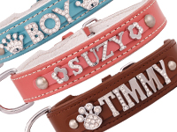 Collars with names