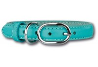 Leather Collar Turquoise/Silver