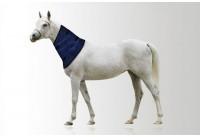 Aqua Coolkeeper Neckcooler for Horses