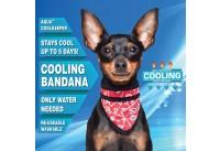 Aqua Coolkeeper Cooling Pet Bandana