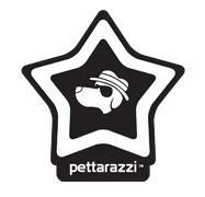pettarazzi